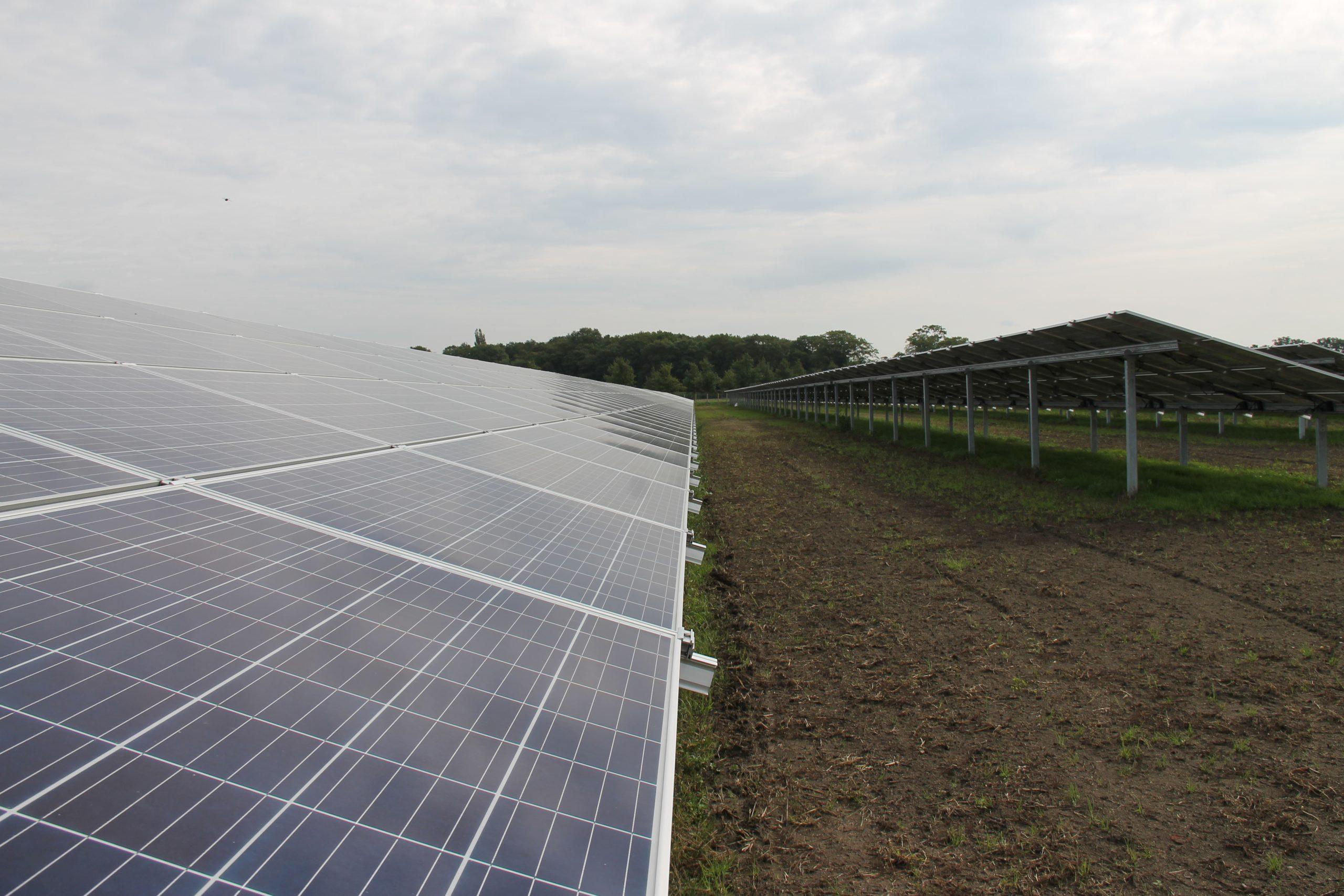 endona zonnepaneel zonnepanelen zonnepark
