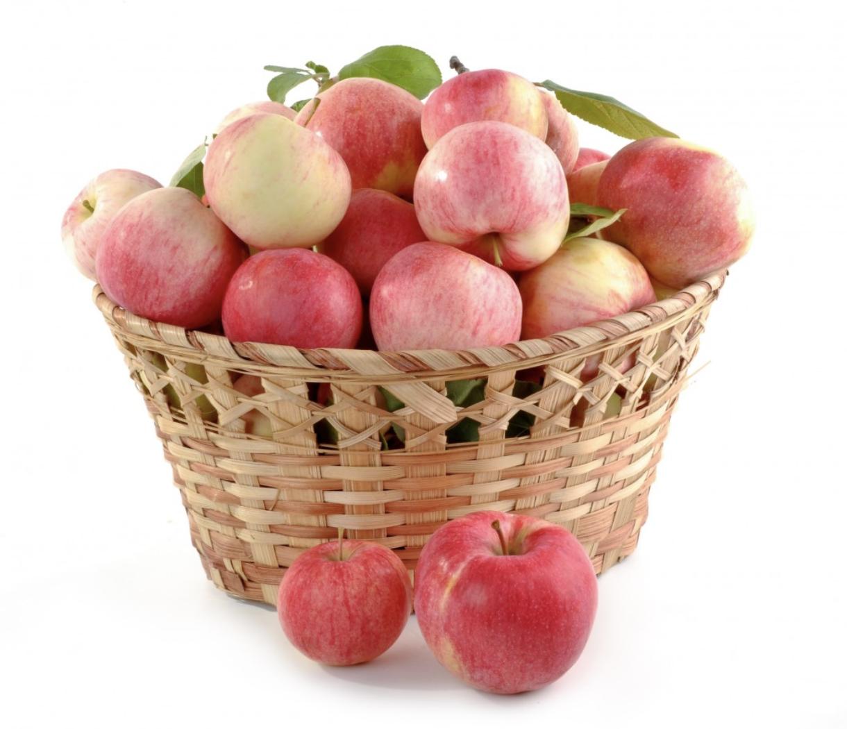 appels lokaal voedsel